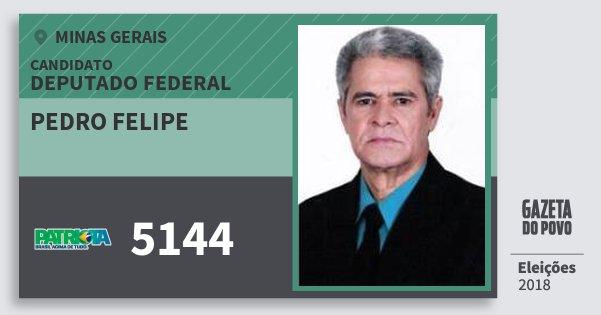 Santinho Pedro Felipe 5144 (PATRI) Deputado Federal | Minas Gerais | Eleições 2018