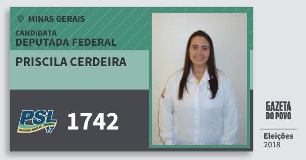 Santinho Priscila Cerdeira 1742 (PSL) Deputada Federal | Minas Gerais | Eleições 2018