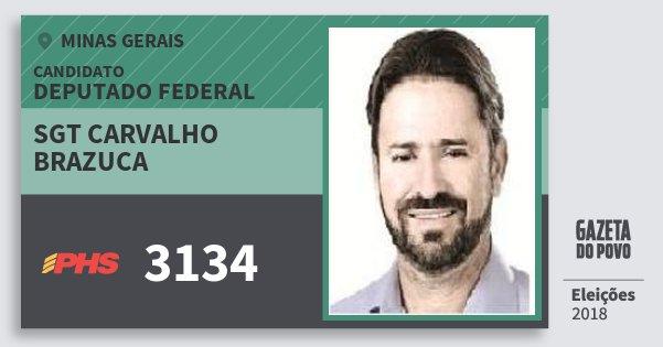 Santinho Sgt Carvalho Brazuca 3134 (PHS) Deputado Federal | Minas Gerais | Eleições 2018