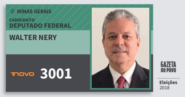 Santinho Walter Nery 3001 (NOVO) Deputado Federal | Minas Gerais | Eleições 2018