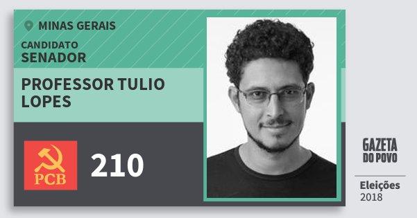Santinho Professor Tulio Lopes 210 (PCB) Senador | Minas Gerais | Eleições 2018
