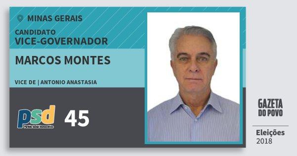 Santinho Marcos Montes 45 (PSD) Vice-governador | Minas Gerais | Eleições 2018