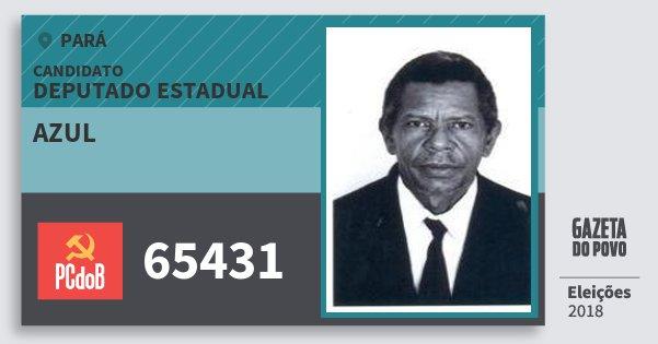 Santinho Azul 65431 (PC do B) Deputado Estadual | Pará | Eleições 2018
