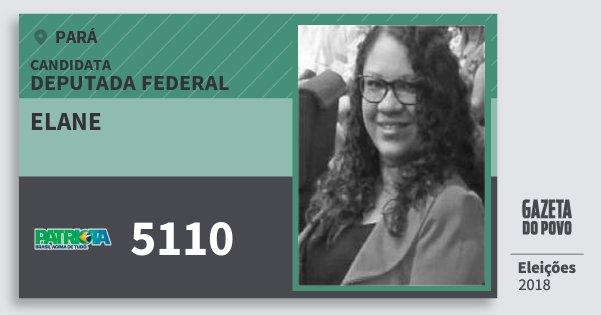 Santinho Elane 5110 (PATRI) Deputada Federal | Pará | Eleições 2018