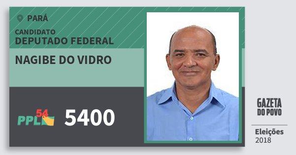 Santinho Nagibe do Vidro 5400 (PPL) Deputado Federal | Pará | Eleições 2018
