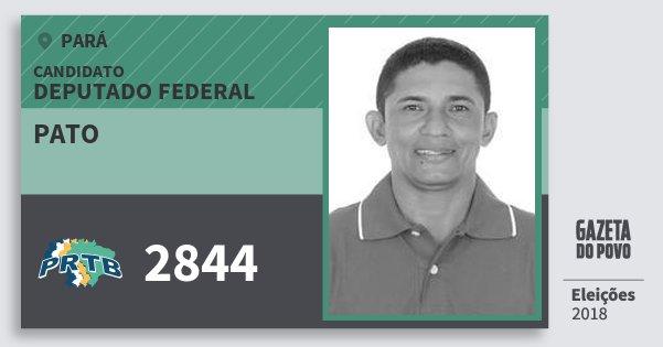 Santinho Pato 2844 (PRTB) Deputado Federal | Pará | Eleições 2018