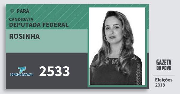 Santinho Rosinha 2533 (DEM) Deputada Federal | Pará | Eleições 2018
