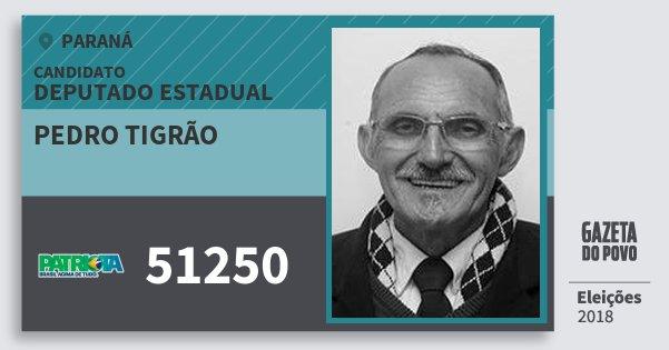Santinho Pedro Tigrão 51250 (PATRI) Deputado Estadual | Paraná | Eleições 2018