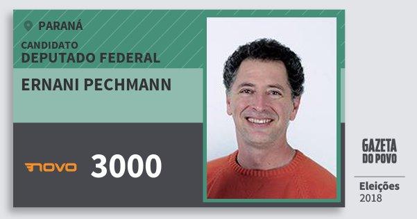 Santinho Ernani Pechmann 3000 (NOVO) Deputado Federal | Paraná | Eleições 2018