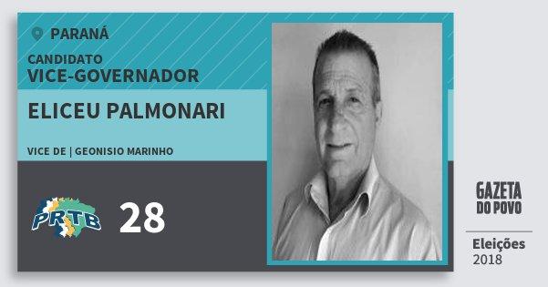 Santinho Eliceu Palmonari 28 (PRTB) Vice-governador   Paraná   Eleições 2018