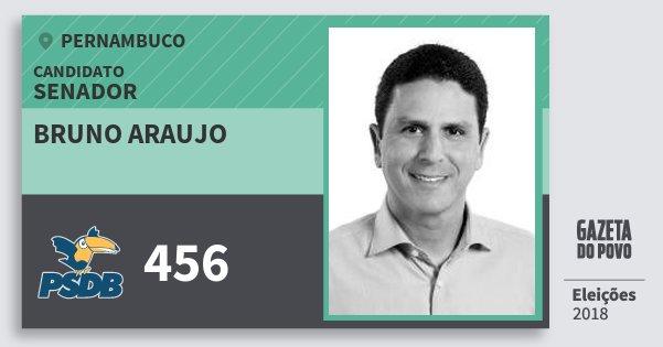 Santinho Bruno Araujo 456 (PSDB) Senador | Pernambuco | Eleições 2018