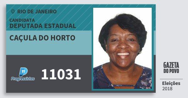 Santinho Caçula do Horto 11031 (PP) Deputada Estadual | Rio de Janeiro | Eleições 2018