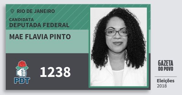Santinho Mae Flavia Pinto 1238 (PDT) Deputada Federal | Rio de Janeiro | Eleições 2018