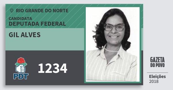 Santinho Gil Alves 1234 (PDT) Deputada Federal | Rio Grande do Norte | Eleições 2018