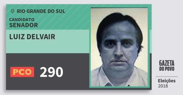 Santinho Luiz Delvair 290 (PCO) Senador | Rio Grande do Sul | Eleições 2018