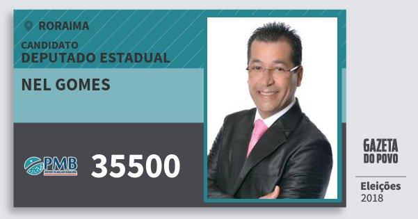 Santinho Nel Gomes 35500 (PMB) Deputado Estadual | Roraima | Eleições 2018
