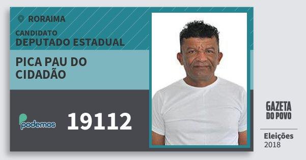Santinho Pica Pau do Cidadão 19112 (PODE) Deputado Estadual | Roraima | Eleições 2018