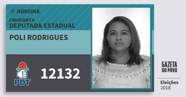 Santinho Poli Rodrigues 12132 (PDT) Deputada Estadual | Roraima | Eleições 2018