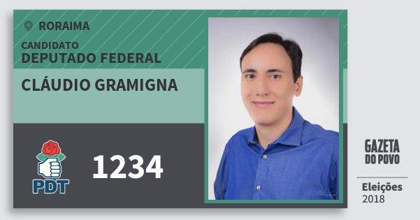 Santinho Cláudio Gramigna 1234 (PDT) Deputado Federal | Roraima | Eleições 2018