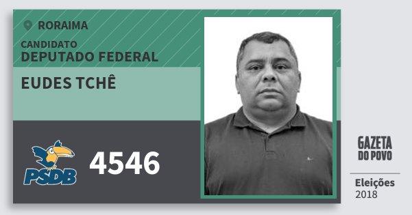 Santinho Eudes Tchê 4546 (PSDB) Deputado Federal | Roraima | Eleições 2018