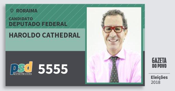 Santinho Haroldo Cathedral 5555 (PSD) Deputado Federal | Roraima | Eleições 2018