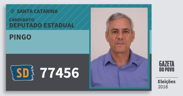 Santinho Pingo 77456 (SOLIDARIEDADE) Deputado Estadual | Santa Catarina | Eleições 2018
