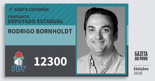 Santinho Rodrigo Bornholdt 12300 (PDT) Deputado Estadual   Santa Catarina   Eleições 2018