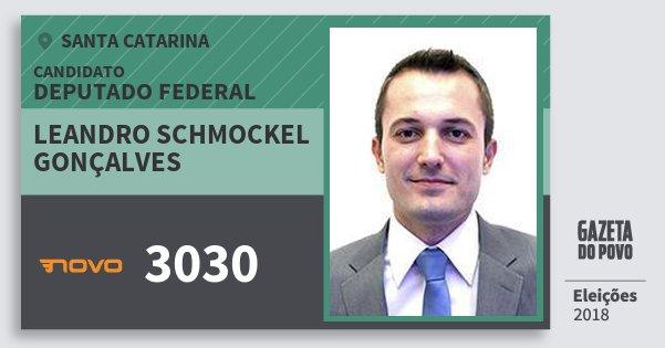 Santinho Leandro Schmockel Gonçalves 3030 (NOVO) Deputado Federal | Santa Catarina | Eleições 2018
