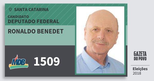 Santinho Ronaldo Benedet 1509 (MDB) Deputado Federal | Santa Catarina | Eleições 2018