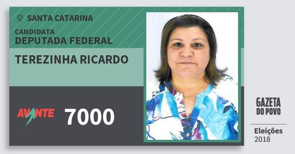 Santinho Terezinha Ricardo 7000 (AVANTE) Deputada Federal | Santa Catarina | Eleições 2018