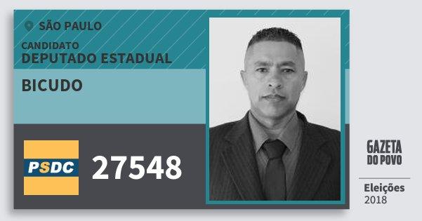 Santinho Bicudo 27548 (DC) Deputado Estadual | São Paulo | Eleições 2018
