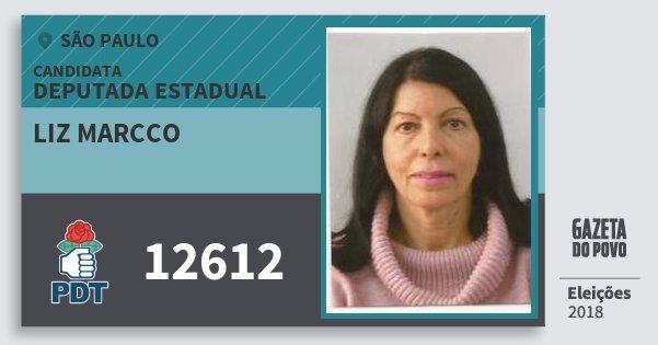 Santinho Liz Marcco 12612 (PDT) Deputada Estadual | São Paulo | Eleições 2018