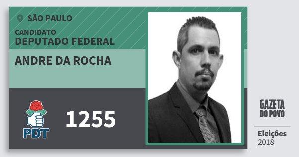 Santinho Andre da Rocha 1255 (PDT) Deputado Federal | São Paulo | Eleições 2018