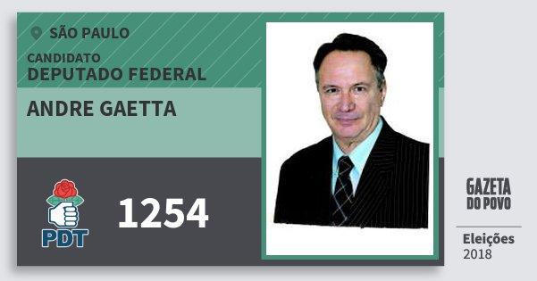Santinho Andre Gaetta 1254 (PDT) Deputado Federal | São Paulo | Eleições 2018