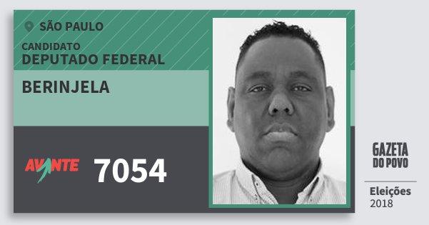 Santinho Berinjela 7054 (AVANTE) Deputado Federal | São Paulo | Eleições 2018