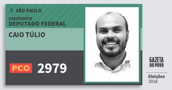 Santinho Caio Túlio 2979 (PCO) Deputado Federal | São Paulo | Eleições 2018