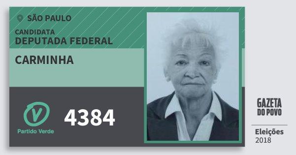 Santinho Carminha 4384 (PV) Deputada Federal | São Paulo | Eleições 2018