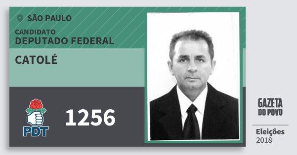 Santinho Catolé 1256 (PDT) Deputado Federal | São Paulo | Eleições 2018