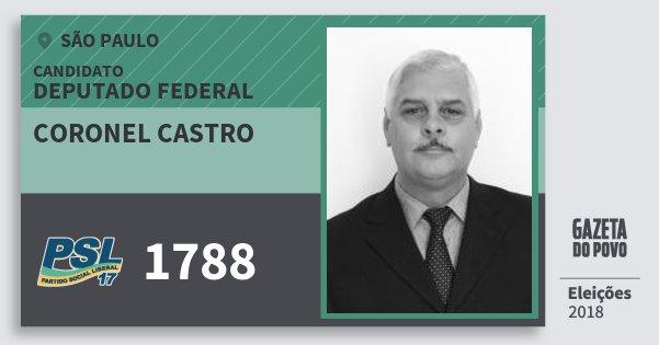 Santinho Coronel Castro 1788 (PSL) Deputado Federal | São Paulo | Eleições 2018