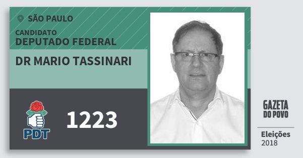 Santinho Dr Mario Tassinari 1223 (PDT) Deputado Federal | São Paulo | Eleições 2018