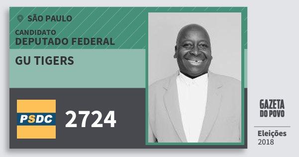 Santinho Gu Tigers 2724 (DC) Deputado Federal | São Paulo | Eleições 2018