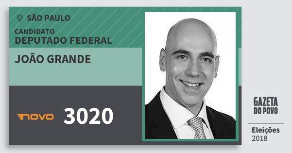Santinho João Grande 3020 (NOVO) Deputado Federal | São Paulo | Eleições 2018