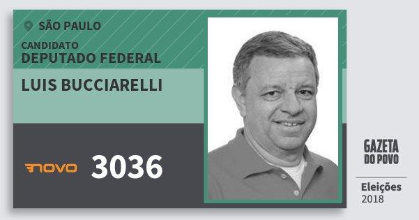 Santinho Luis Bucciarelli 3036 (NOVO) Deputado Federal | São Paulo | Eleições 2018