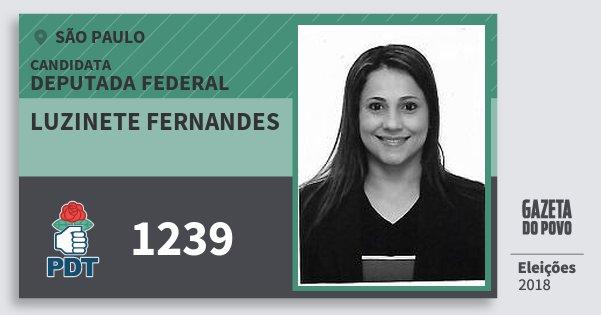 Santinho Luzinete Fernandes 1239 (PDT) Deputada Federal | São Paulo | Eleições 2018