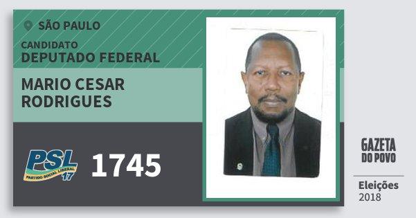 Santinho Mario Cesar Rodrigues 1745 (PSL) Deputado Federal | São Paulo | Eleições 2018
