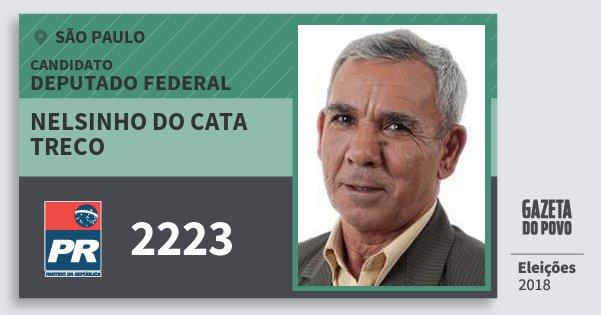 Santinho Nelsinho do Cata Treco 2223 (PR) Deputado Federal | São Paulo | Eleições 2018
