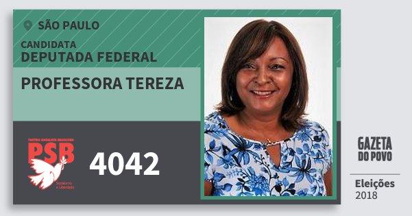 Santinho Professora Tereza 4042 (PSB) Deputada Federal | São Paulo | Eleições 2018