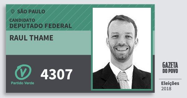 Santinho Raul Thame 4307 (PV) Deputado Federal   São Paulo   Eleições 2018