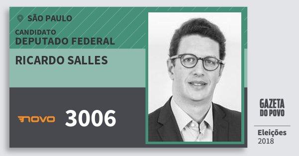 Santinho Ricardo Salles 3006 (NOVO) Deputado Federal  bdab1298d127c