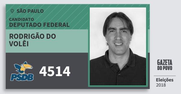Santinho Rodrigão do Volêi 4514 (PSDB) Deputado Federal | São Paulo | Eleições 2018
